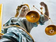 Wel geweld bij diefstal, maar geen 'diefstal met geweld': Veenendaler (23) krijgt lagere straf