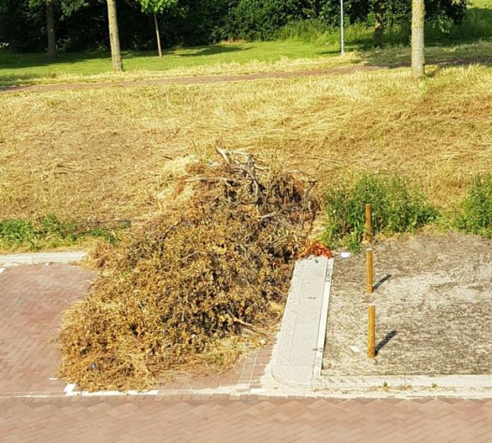 Biologisch afbreek of troep? Het laatste, vindt  Josien Hofs die deze foto nam aan de Beerze in Zevenkamp. Het maaiafval is daar volgens haar gedumpt door de gemeente zelf.