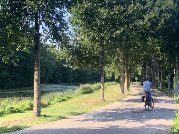 De De Virieusingel in Zaltbommel.