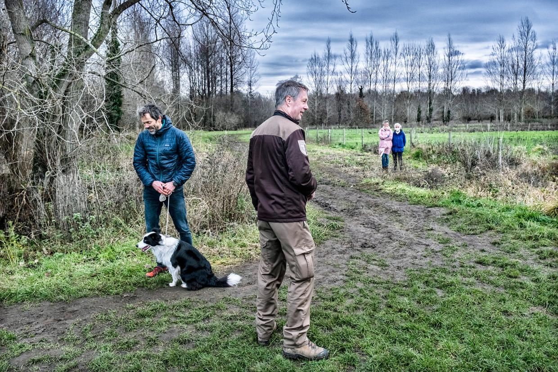 Loslopende honden waren dit jaar een kleine plaag in veel natuurgebieden. Beeld Tim Dirven