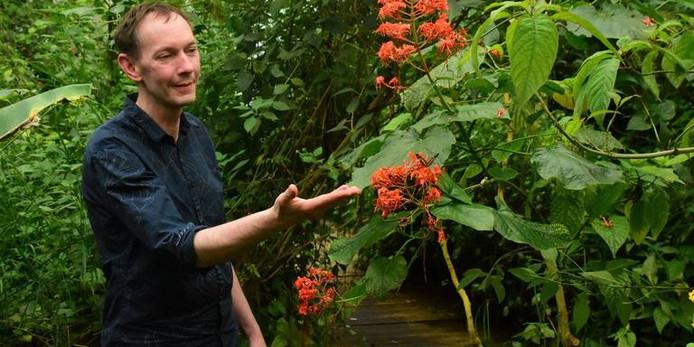 Erik Hendriks in zijn vlindertuin