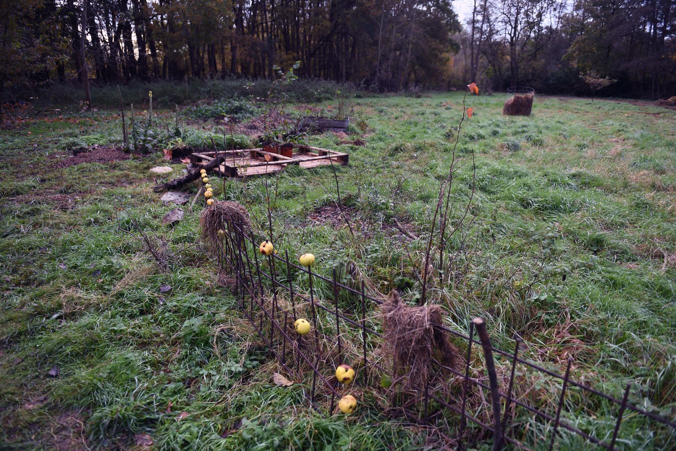 Het voedselbos in Keerbergen