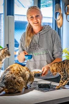 Jij op vakantie, huisdier naar de oppas? Vergeet het maar: dierenpensions overvol deze zomervakantie