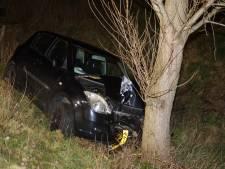 Automobilist rijdt tegen boom aan in Waalwijk