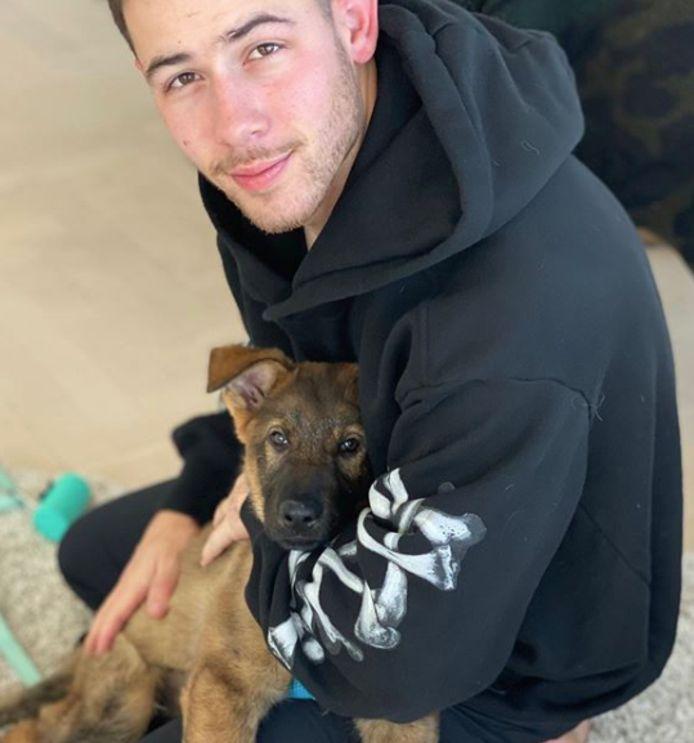 Nick Jonas kreeg een puppy cadeau.