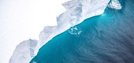 Pinguïns ontkomen aan ramp: reusachtige ijsberg breekt in stukken