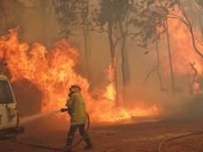 Bosbranden en lockdown in Australië: 'We hebben nu twee noodtoestanden'