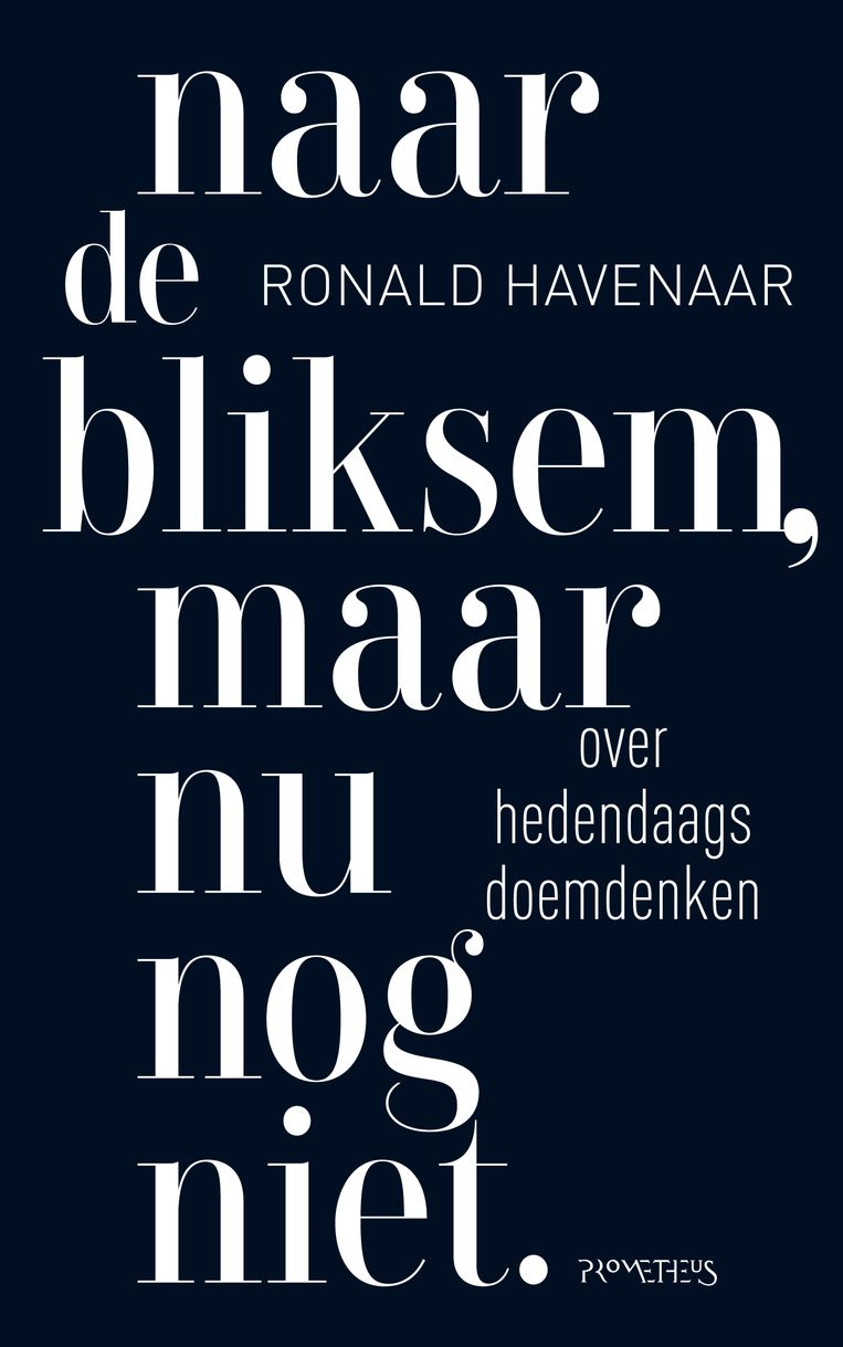 Ronald Havenaar: Naar de bliksem, maar nu nog niet. Beeld
