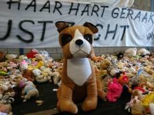 Meer dan 4.000 knuffels achtergelaten op herdenkingsveld spoordrama Oss