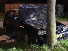 Auto botst tegen boom in Schijndel en brandt uit, bestuurder naar ziekenhuis