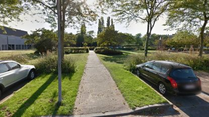 Twintiger riskeert jaar cel voor verkoop 'nieuwe en verse groentjes' in Kortrijkse Magdalenapark