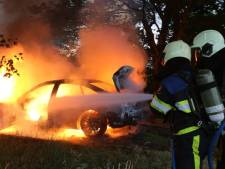 Gestolen auto brandt volledig uit in de bossen bij Cromvoirt