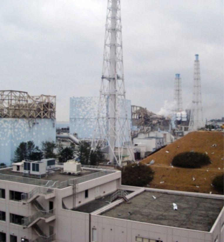 'Bij de kernramp van Fukushima vielen welgeteld núl doden. Sterker, de echte gezondheidsschade van dat ongeluk komt van de sluiting van de kerncentrales in Japan.' Beeld