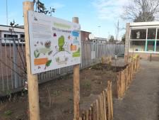 Leerlingen van Die Heenetrecht eten uit eigen tuin