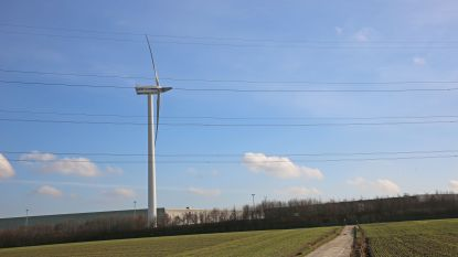 """Eoly reageert op protest tegen komst van windmolens: """"Houden rekening met strengste wetgevingen aan beide zijden van de taalgrens"""""""