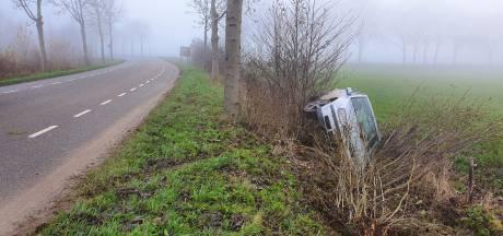 Auto raakt van de weg op Dijkgraaf de Leeuwweg in Appeltern