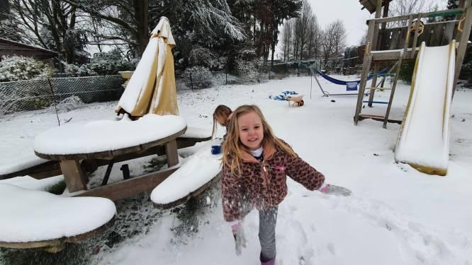 IN BEELD: Snowboarden met de honden, sleeënrij achter een tractor, Sky (1) geniet van de eerste sneeuw en andere prachtige sneeuwbeelden