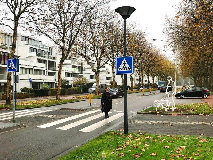 Een silhouet van een voetganger moet automobilisten attenderen op het zebrapad bij winkelcentrum De Burcht in Breda.