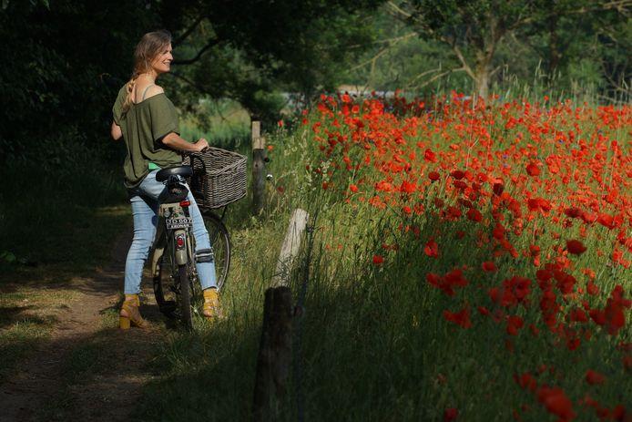 De tweede weekwinnaar: een zomers plaatje in de Genneper Parken met een prachtige explosie van klaprozen.