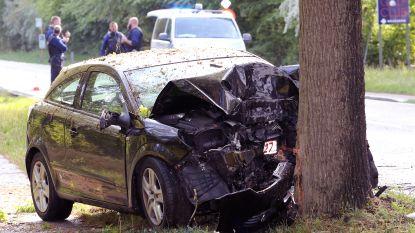 Bestuurder (39) sterft na frontale botsing op boom naast gewestweg