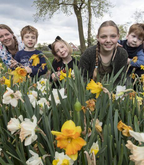 Pluk een bosje bloemen, doe een vrije gift en help mee het leven van Mees (bijna 4) uit Bornerbroek iets beter te maken