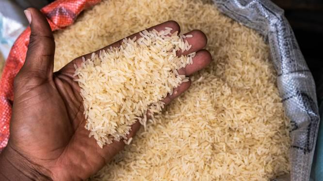 Mislukt je rijst altijd? Met deze tip krijg je wel gare, heerlijk geurende rijst