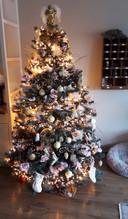 Tonnie Vogel is terecht trots op hun prachtige kerstboom.