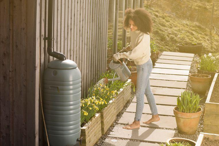 Water is duur, kostbaar, en het is zonde om het te verspillen. Met een regenton kan je regenwater hergebruiken dat gratis in je tuin valt.