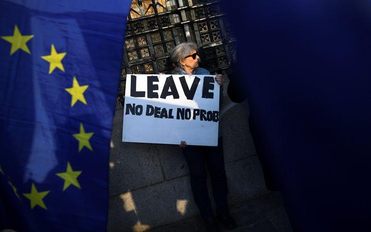 Een pro-brexit-demonstrant bij de ingang van het parlement Beeld REUTERS