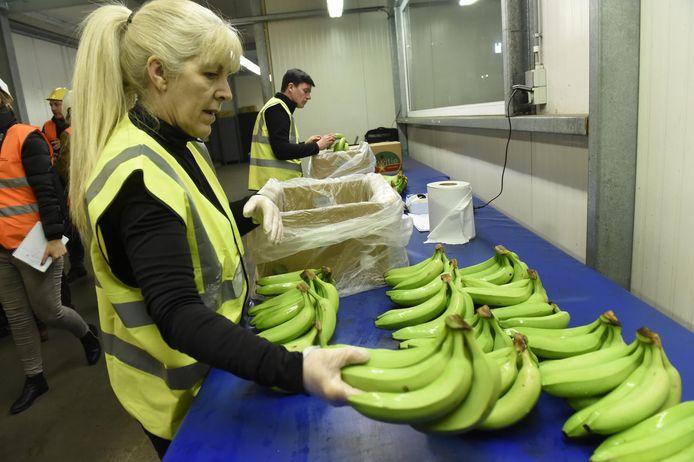 Bij het uitpakken vanmorgen vonden de werknemers van Colruyt