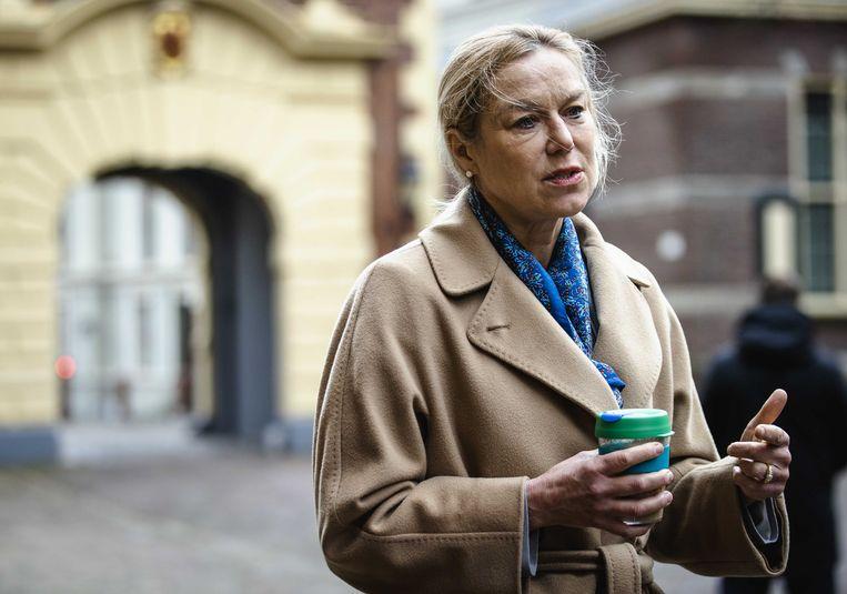 Sigrid Kaag staat de pers te woord op het Binnenhof voorafgaand aan de wekelijkse ministerraad afgelopen vrijdag. Beeld ANP