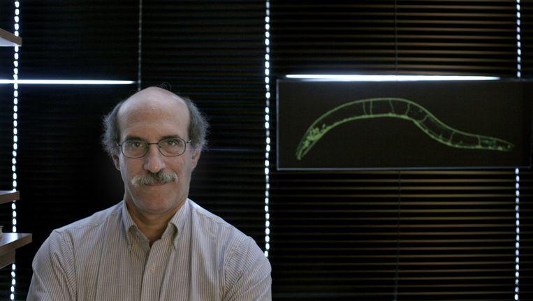 Martin Chalfie, die een Nobelprijs won voor zijn werk rond groen fluorescerende eiwitten, zegt dat hij en andere Nobelprijs-winnaars van een reeks ongelukken en toevallige ontdekkingen hebben geprofiteerd. Beeld NYT