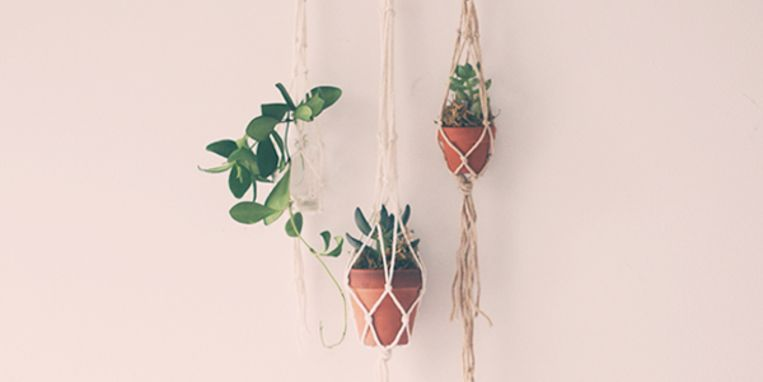 Plantenhanger maken - Maak een hoofdbord aan ...