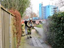 Heg in brand gestoken in Hoogland, daders vluchten weg