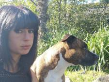"""Femme enceinte tuée par des chiens: """"Aucun chien de chasse impliqué dans la mort d'Elisa"""""""