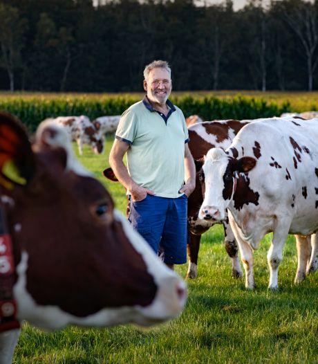 Veel onbegrip bij boeren over mogelijke plannen kabinet; 'Onteigenen? Je reinste politiek onvermogen'