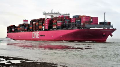 Roze containerschip aangemeerd in haven