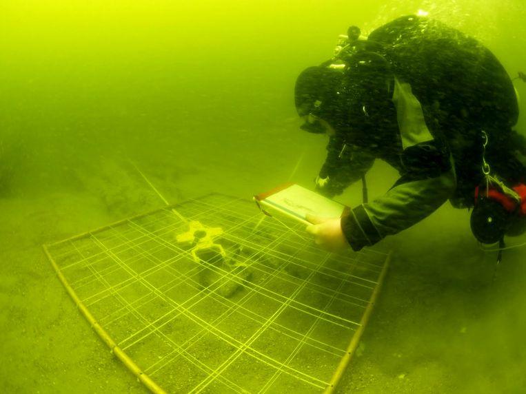 Een duiker zoekt naar sporen op een 18de-eeuws wrak op zandbank Buiten Ratel. Voor sommige onderzoeken zal evenwel een onderwaterrobot ingezet moeten worden.