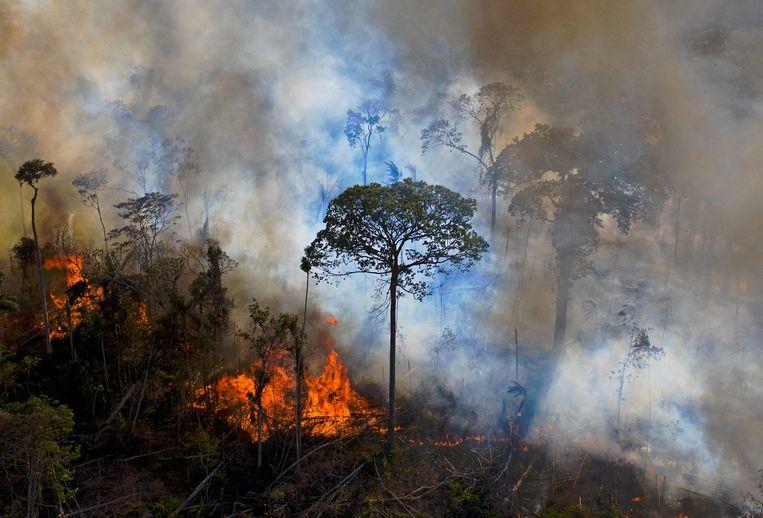 Een illegaal in brand gestoken stuk van het Braziliaanse Amazonewoud. Beeld AFP