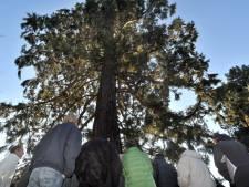 Natuureducatie Grave in het nauw doordat gemeente streep zet door 3500 euro subsidie