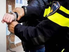 Carnavalsvierders bezorgen politie een drukke nacht