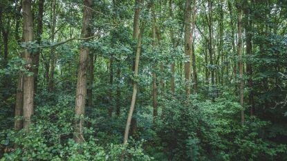 Protest tegen kappen bos groeit