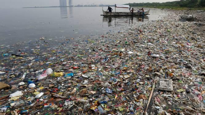 Plastic vergiftigt zeedieren over de generaties heen