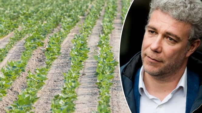 """Brussel gaat landbouwgrond kopen in Vlaams- en Waals-Brabant """"om Brusselse bevolking te voeden"""""""