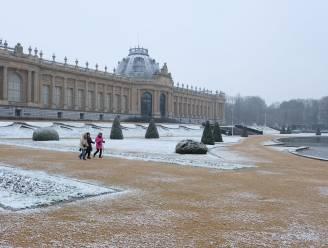 Wandelaars en kinderen proeven van bescheiden wit tapijt in Tervuren