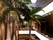 Dit is de tropische kantoortuin die u niet mocht zien