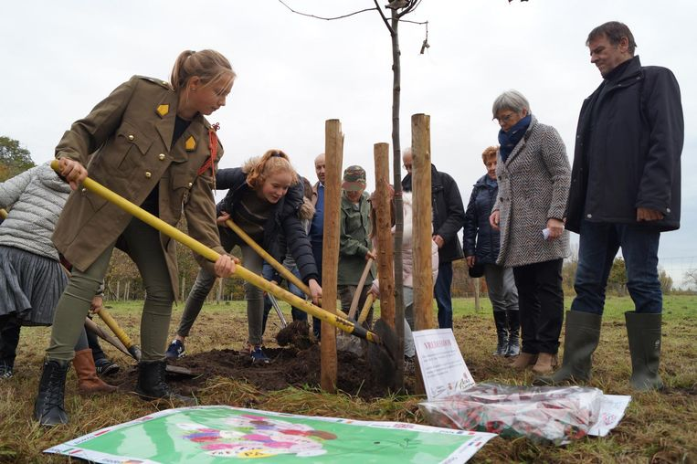 De scholieren van De Linde, sommige in legerkledij, planten de vredesboom.