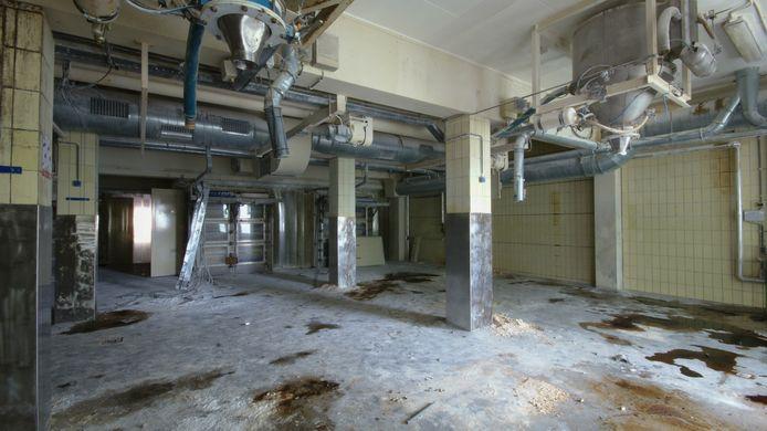 De jonge fotograaf CJ Loman struinde urenlang door de vrijwel verlaten Senzora-fabriek.