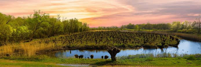 Natuurgebied Avelingen, dit werk van fotograaf Leo Lanser (Giessenburg) is geselecteerd voor een internationale vakfotografen expsitie in Banjaluka, Bosnië.