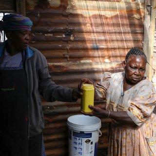 Ananas is niet aan te slepen in Zuid-Afrika – voor zelfgebrouwen bier
